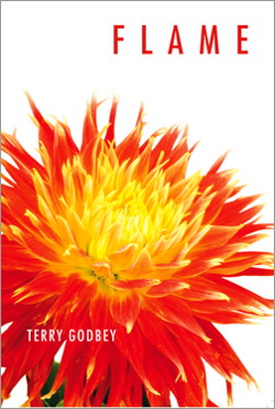 flame by terry godbey