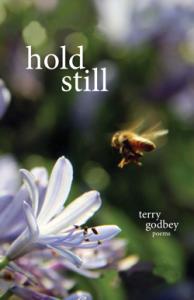 hold-still-250